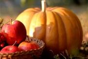 Нововолинці ярмаркуватимуть  18 листопада