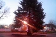 Головну ялинку міста встановили на площі В'ячеслава Чорновола