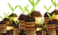 Левова частка іноземних інвестицій надходить у Нововолинськ
